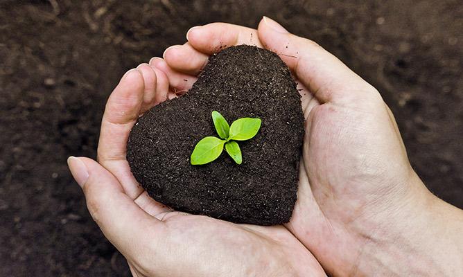 6 formas de cuidar el medio ambiente desde casa
